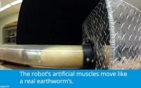 视频:DARPA推进大型机器人蚯蚓仿生研制项目(英文)
